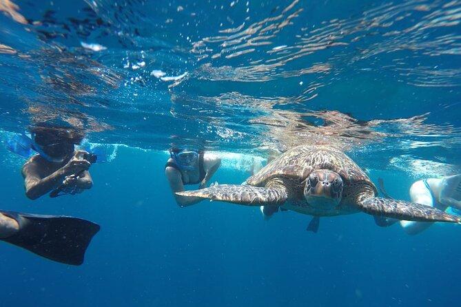 Snorkeling Tour In Gili Trawangan, Gili Meno And Gili Air Pick Up From Bali