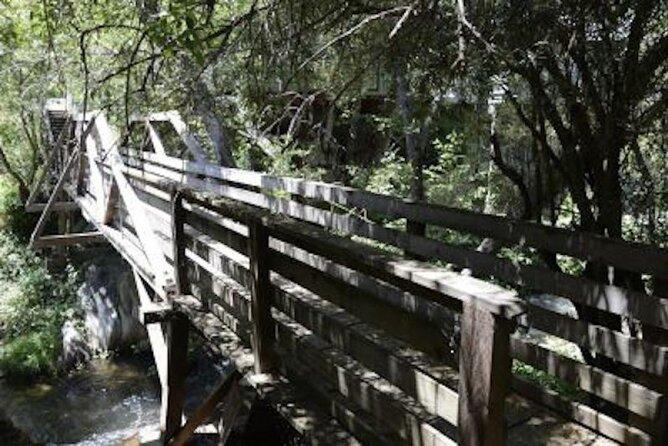 Calaveras County Scavenger Hunt: UnFROGettable Angels Camp