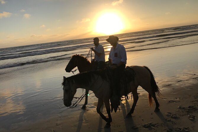 Amazing Guided Horseback Ride through La Mision estuary and beach