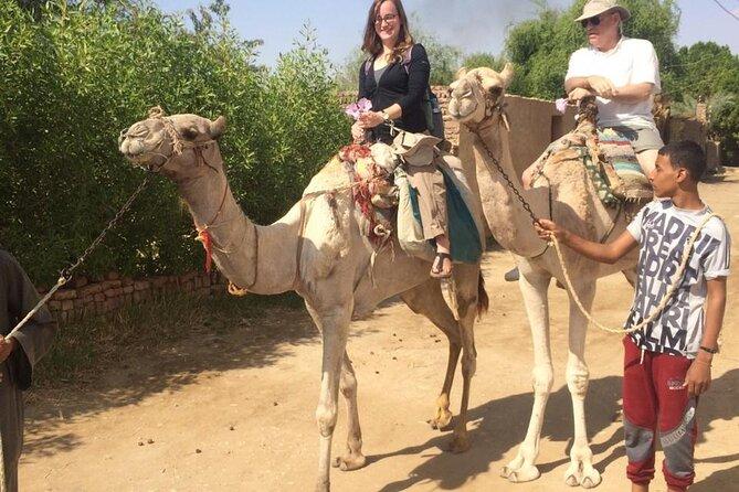 2 Nights tours: luxor, Aswan,air balloon&abu simbel by sleeping train from Cairo