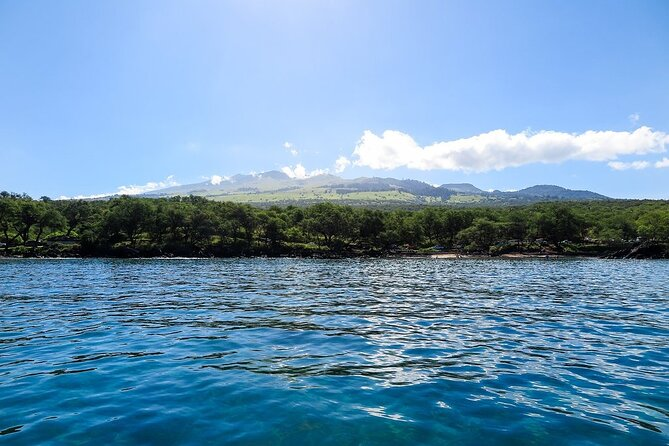 SUP Turtle Town Snorkel from Makena