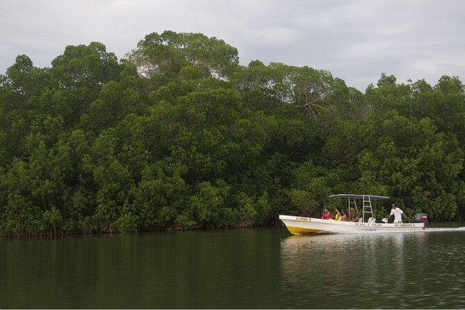Laguna de la garza de Tigre (Chacahua) from Puerto Escondido