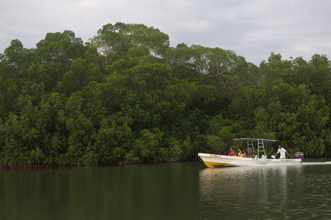 Manialtepec Lagoon from Puerto Escondido