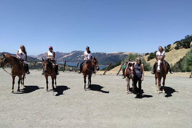 Sonoma Horseback-Riding Tour