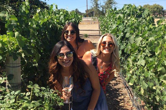Private All-Inclusive Wine Tour of Santa Barbara Wine Country