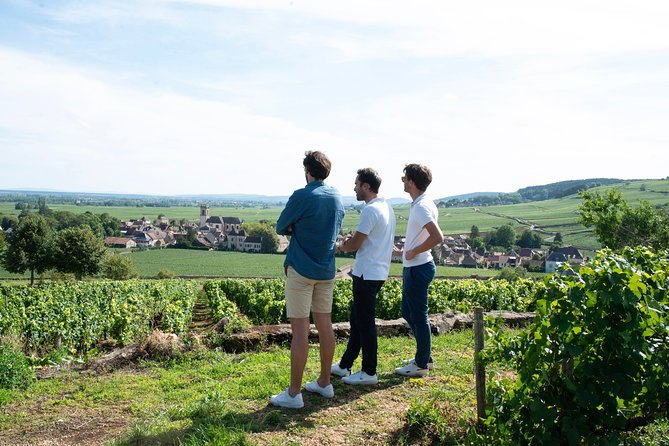 Dijon Small-Group Day Tour including Wine Tastings and Lunch