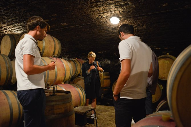 Beaune Small-Group Day Tour including Wine Tastings and Lunch