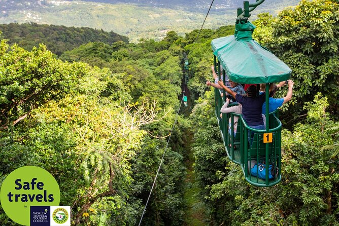 Rainforest Adventures Ultimate 3 Tour With Transfers From Pier