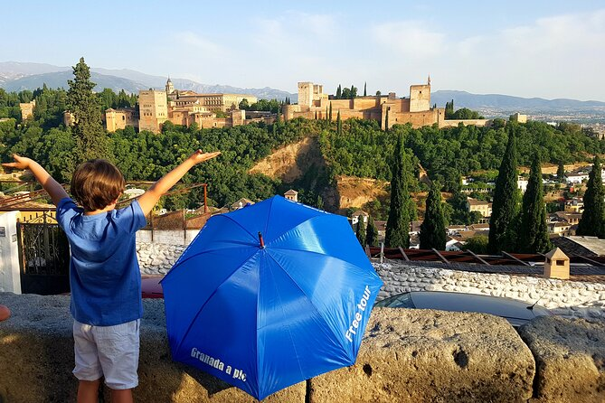 Alhambra Generalife and Nasrid Palaces Guided Walking Tour in Granada