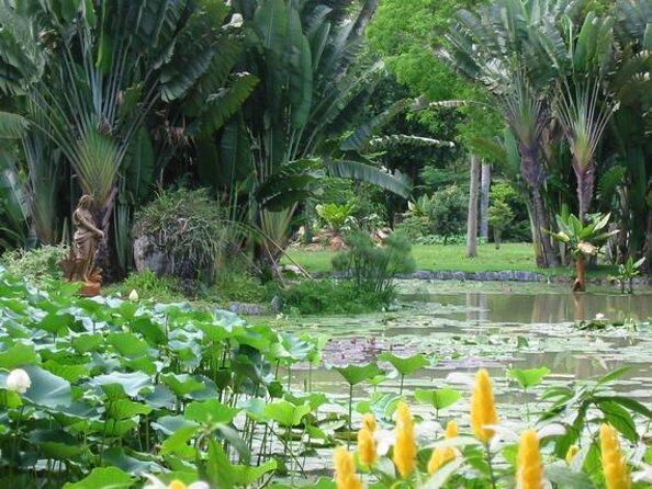 Rio de Janeiro Botanical Garden (Jardim Botanico)