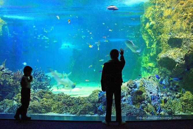 SEA LIFE® Sydney Aquarium