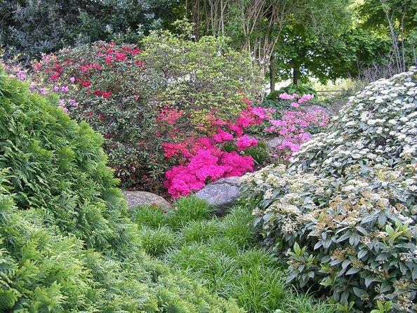 Botanical Garden (University of Zurich)