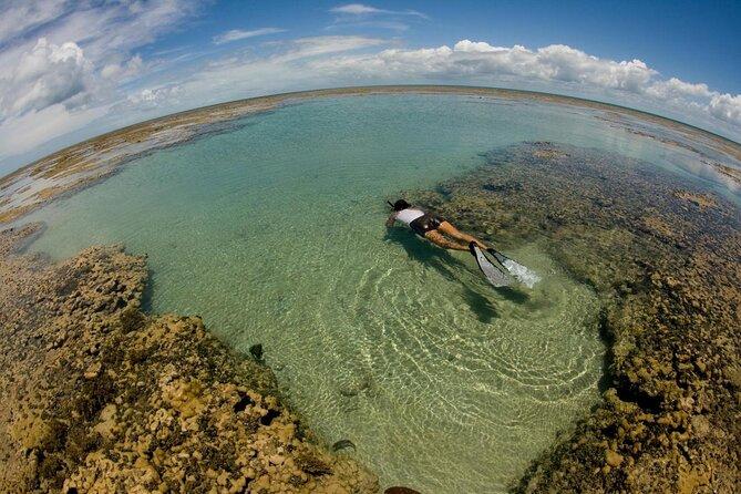 Maracajaú Reef (Parrachos de Maracajaú)