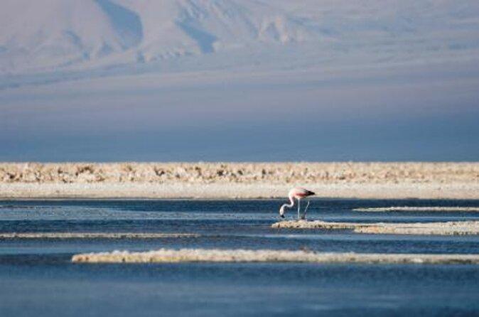 Atacama Salt Flats (Salar de Atacama)