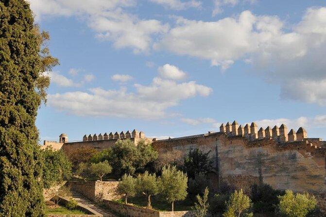 Gibralfaro Castle (Castillo de Gibralfaro)