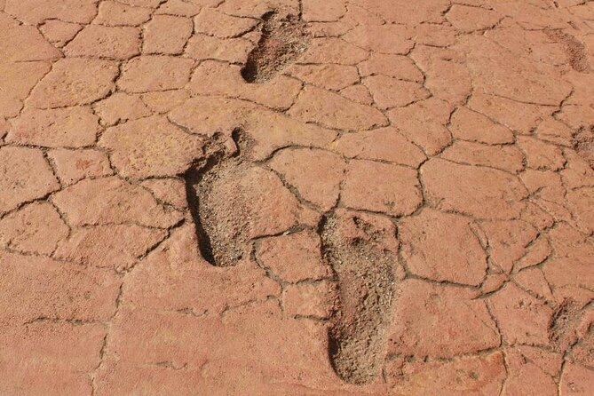 Ancient Footprints of Acahualinca (Huellas de Acahualinca)