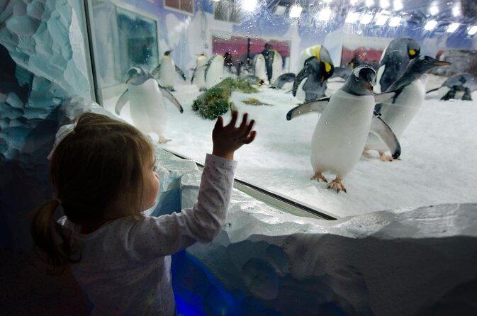Kelly Tarlton's SEA LIFE® Aquarium