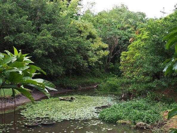 Jardim Botânico de Taipei