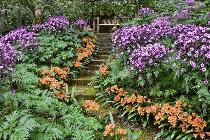 Santa Barbara Botanic Garden (SBBG)