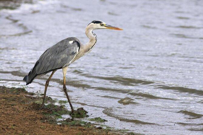 Estero Del Yugo Nature Preserve
