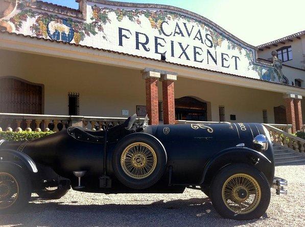 Domaine viticole Freixenet (Celler Freixenet)