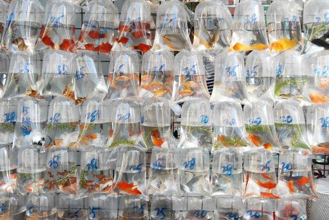 Mercato del pesce rosso (Tung Choi Street)