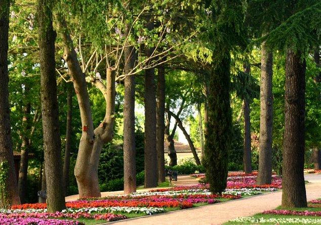 Emirgan Park (Emirgan Korusu)