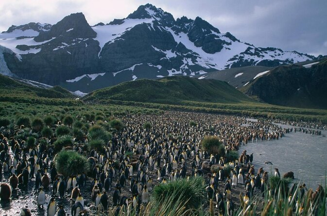 South Georgia and the South Sandwich Islands (SGSSI)