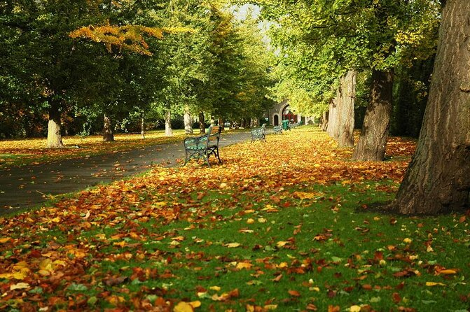 Bute Park and Arboretum
