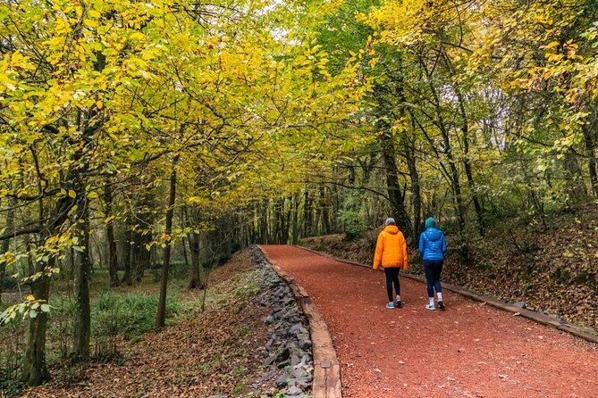 Belgrad Forest (Belgrad Ormani)