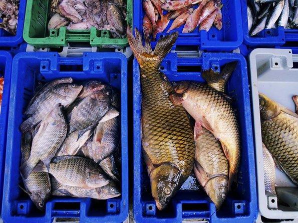 Marché aux poissons de Noryangjin