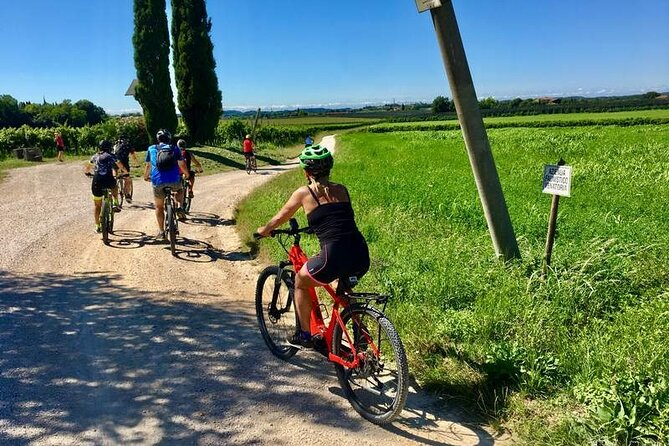 Bike Tour and Wine Tasting in Colà di Lazise