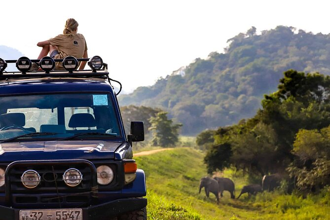 Wildlife Tour Covering Birds and Mammals (7 Days)