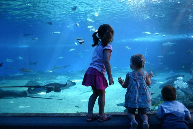 SEA LIFE® Munich