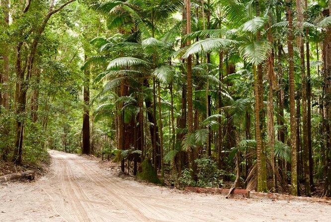 Floresta Tropical da Estação Central