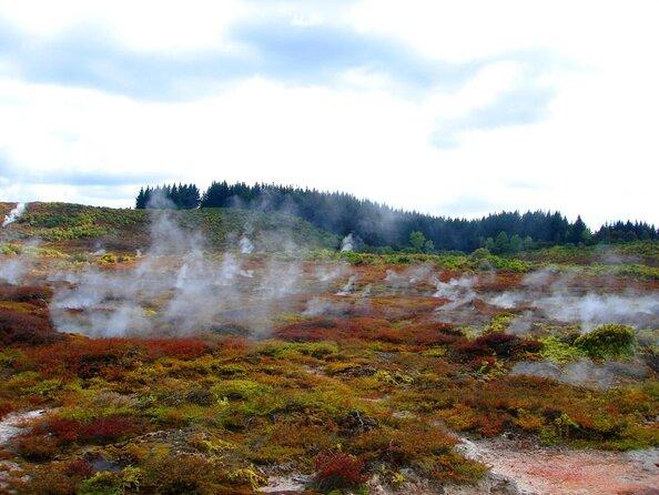 Vale Termal Natural Wairakei