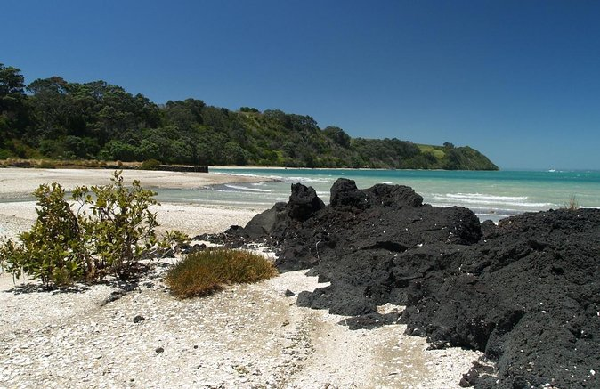 Ilha Rangitoto