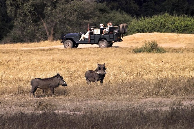 Parco nazionale del Lower Zambezi