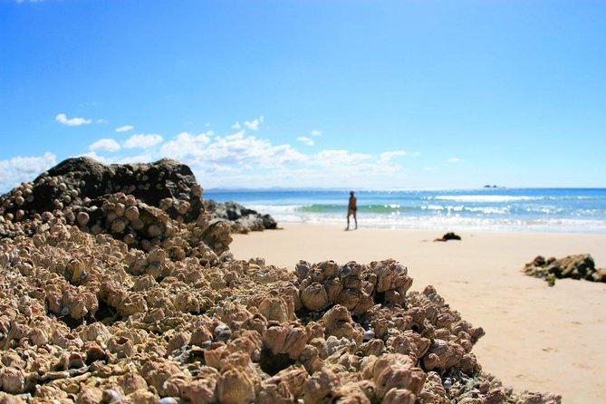 Praia de Belongil