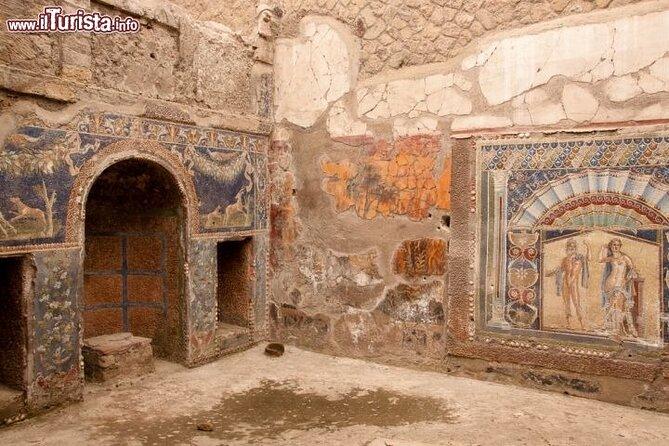Herculaneum ruins clumbing Mt Vesuvio and Winery teast