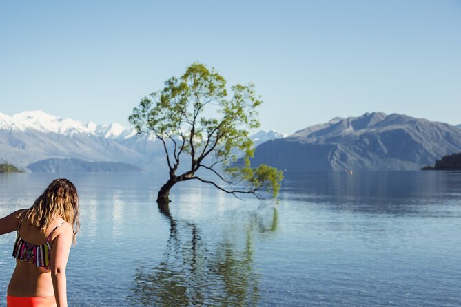 10 day - South Island Tour (All inclusive)