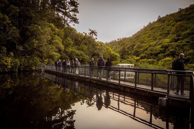 Zealandia - Twilight Guided Eco Wildlife Tour