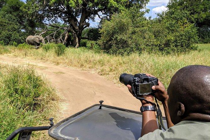 Taking Wildlife pictures