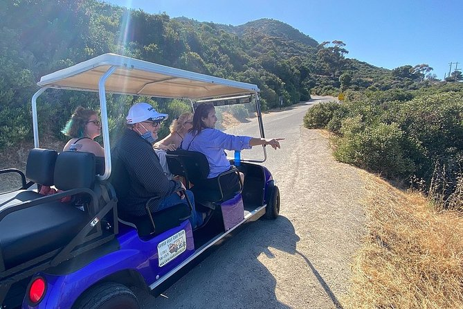 Private Guided Golf Cart Tour in Avalon