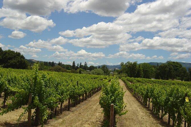 6 Hour - Private Napa Wine Tour in a Luxury Sedan