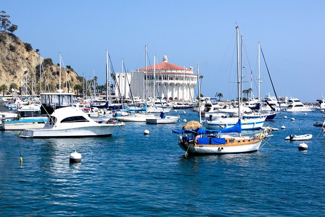 Catalina Island (LB Port): Private Transfer From Orange County Central.