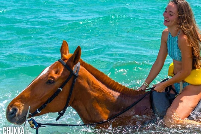 Chukka Horseback Ride & Swim With Access Pass To Ocean Outpost Park