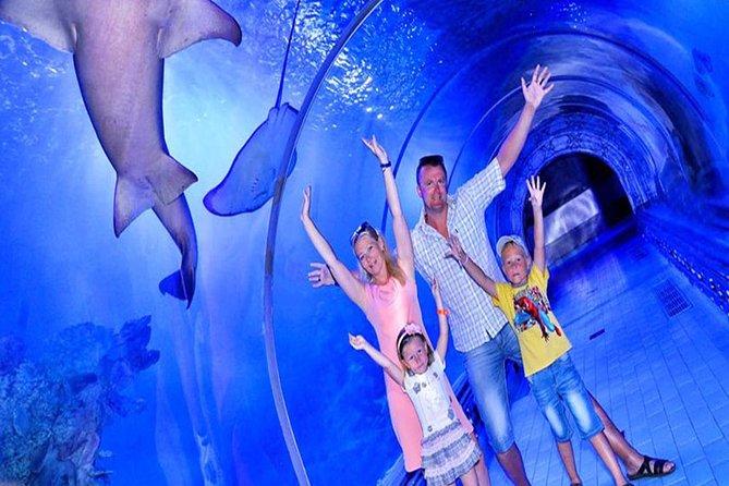 Grand Aquarium Hurghada