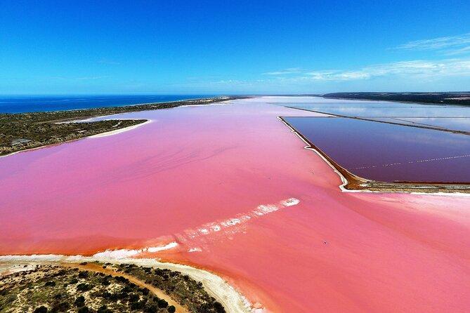 ピンク湖とアブロロス一日フライとフリッパー