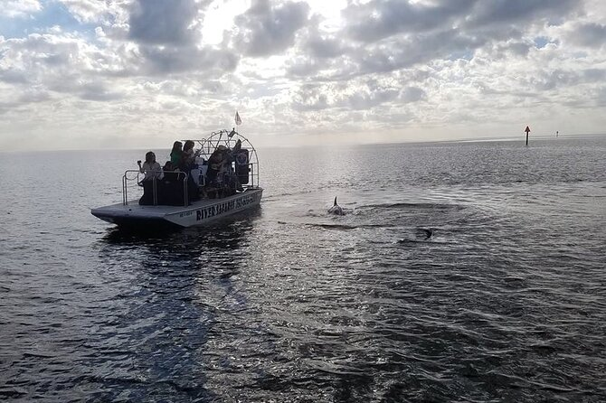 Gulf of Mexico Airboat Ride and Dolphin Quest from Homosassa